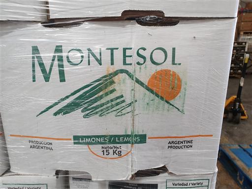 -- LEMONS (113PCS CARTOON BOX) (MONTESOL) 15KG - DELI(x)